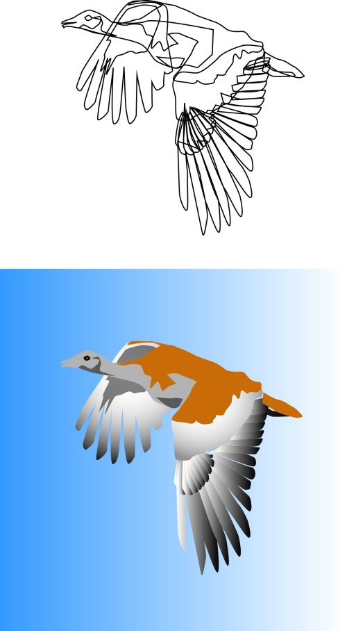 Illustrated_1