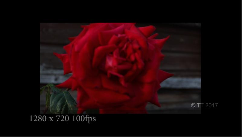 Screen Shot 2017-06-23 at 13.54.37